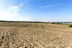 HDR landscape with fields Stock Photography