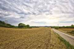 HDR landscape with fields Royalty Free Stock Photo