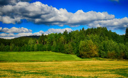 HDR landscape with fields, meadows and forest Royalty Free Stock Photography