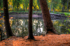 An HDR landscape of a forest and pond. Stock Photo