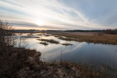 HDR landscape shot of an overgrowing lake Royalty Free Stock Photography