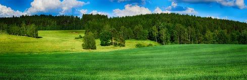 HDR landscape Stock Image
