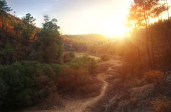 HDR Landscape. Of a valley with pine trees at sunset Stock Photos
