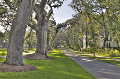 Hdr neighborhood. Hdr image of tree lined street stock photos