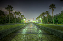 HDR  night shot in Tokyo Japan Royalty Free Stock Photography