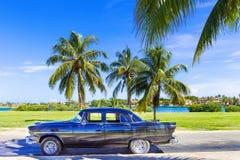 HDR - O carro preto americano do vintage estacionou sob as palmas perto da praia em Varadero Cuba - reportagem de Serie Cuba Fotografia de Stock Royalty Free