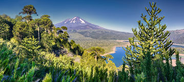 HDR panorama of Volcano Llaima - Chile Royalty Free Stock Images