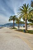 HDR photo of palm trees on the adriatic sea beach Stock Images