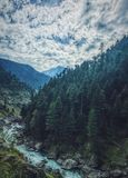 HDR Pine Mountains Royalty Free Stock Photo