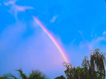 HDR Rainbow over the trees 1 Royalty Free Stock Photos