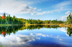 Hdr rendering Fall season at a northern lake. Beautiful sunny day during fall in Northern Canada forest with some red and orange maple trees reflected by a calm Royalty Free Stock Image