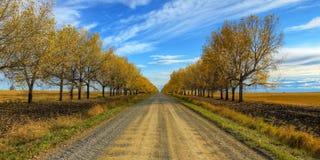 HDR schöne landwirtschaftliche Szene Stockbilder