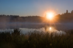 HDR shot of foggy sunrise at a lake. With sedge at shore in Finland Royalty Free Stock Photos