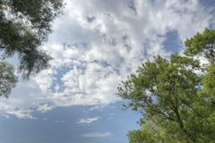 HDR sky with tree leafs on the sides Royalty Free Stock Photos