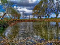 HDR small pond and trees. HDR small pond plants trees grass cloud and sky day outdoors Royalty Free Stock Photography