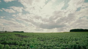 HDR Timelapse on agriculture field stock video