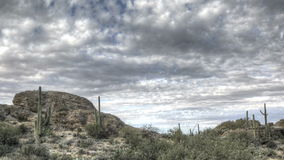 HDR Timelapse Javelina Rocks Saguaro NP Arizona Royalty Free Stock Photography