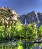 HDR van Dalingen Yosemite Stock Foto