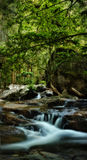 HDR Waterfall or stream Stock Photography