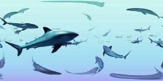HDRI-kaart, sferische de aardachtergrond van het milieupanorama, groep silvertiphaaien die in oceaan 3d equirectangular zwemmen a Vector Illustratie