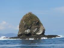 Head ö för apa royaltyfri fotografi