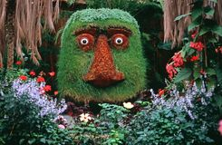 Head. Made of plants as part of garden of Eden. Picture is taken in Iceland Stock Photography