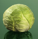 Head of abbage Royalty Free Stock Images