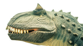 Head ancient dinosaur Royalty Free Stock Photo