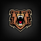Head of Angry bear on dark background. Sport team or club emblem Royalty Free Stock Photography