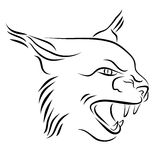 Head Of Angry Lynx Ink Line Art. Black and white illustration with head of lynx with bared teeth. Hand drawn sketch. Ink painting. Design element useful for logo Stock Photography
