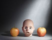 Head and apples. A model head between two apples on a dark background Stock Photo
