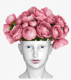 Head as a vase Stock Images