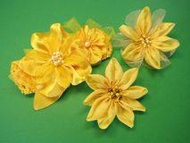 Head bands and brooch Stock Image