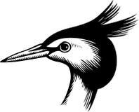Head of a Bird Stock Image