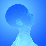 Head on blue Royalty Free Stock Image