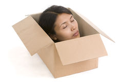 Head in box series - Dead royalty free stock photos