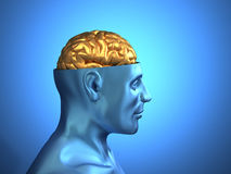Head with brain Stock Image