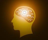 Head and brain gears in progress Stock Image
