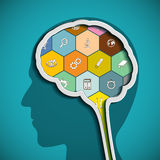 Head with the brain. The human mind. Stock Photography