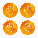 Head with brain sign icon. Male human head. Stock Image