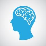 Head with brain Stock Image