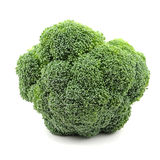Head of Broccoli Royalty Free Stock Photography