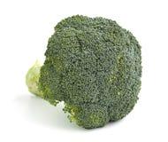 A head of broccoli. An isolated head of broccoli stock image
