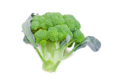 Head of broccoli on a light background Royalty Free Stock Photo