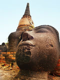 Head of Buddha, Ayutthaya Stock Images