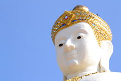 The head of Buddha Image. At ayutthaya Province, Thailand Royalty Free Stock Images