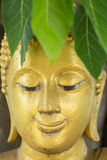 HEAD OF BUDDHA IMAGE Stock Image