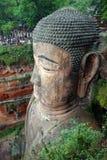 Head of Buddha Royalty Free Stock Image