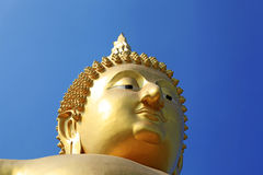 Head of Buddha meditation statue Royalty Free Stock Photo