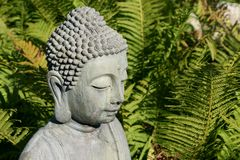 Head of a buddha-statue in front of fern-green Stock Photography